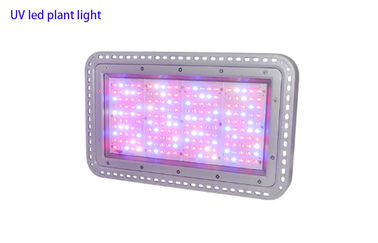 China 200W IR UV white led plant light , indoor greenhouse full spectrum layout led grow lighting supplier
