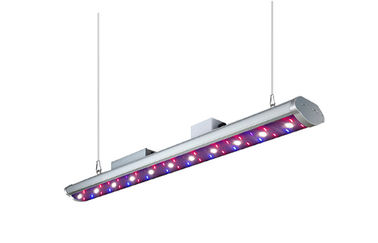 China Tube Full Spectrum LED Plant Light , 200W LED Grow Lights 26000lx Lumens distributor